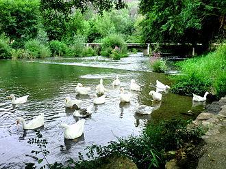 Muga (river) - The Muga at Boadella d'Empordà