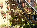 La escalera - panoramio.jpg
