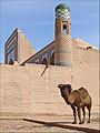 La médersa M. Rakhim Khan (Khiva, Ouzbékistan) (5596920037).jpg