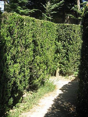 Inside the labyrinth of villa Pisani at Stra, near Venice