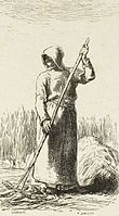Labours of the fields-Woman raking hay (Millet).jpg