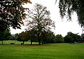 Ladyhill Park - Allerton Road - geograph.org.uk - 575252.jpg