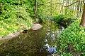 Lage - 2015-05-20 - LIP-082 Werreniederung und Haferbach (35).jpg