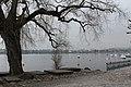 Lake Zurich - panoramio (4).jpg