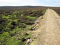 Land Rover track on the moors above Wolsingham - geograph.org.uk - 268843.jpg