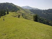 Landscape in Panjal Mastan National Park, Pakistan.jpg