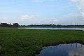 Landscape of Narsingdi District (11).jpg