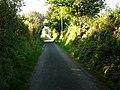 Lane from Bryn-henllan to Cwm-yr-Eglwys, looking north - geograph.org.uk - 524481.jpg