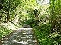 Lane to Nettleton Mill - geograph.org.uk - 489011.jpg