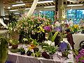 Lanificio Conte - allestimento primo piano per mostra mercato orchidee.JPG