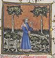 Le Remède de Fortune - Guillaume de Machaut se promenant.jpg
