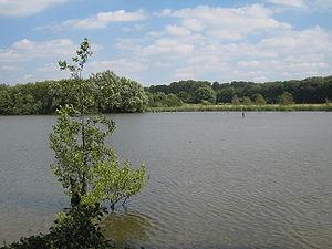 Blick über den Leveringhäuser Teich (2008)