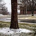 Light snow - panoramio.jpg