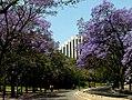 Lisboa, Parque Eduardo VII (3).jpg