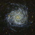 M74-GALEX.png