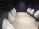 MAN airport toilet 5.jpg
