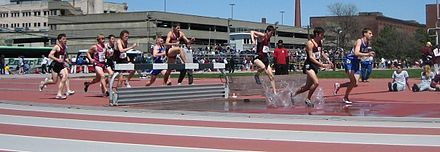 Men traversing the water jump in a steeplechase competition - Track and field