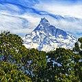 Machhapurche Himal.jpg