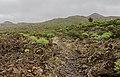 Macizo de Teno, Tenerife 06.jpg