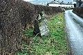 Maen Beuno standing stone - geograph.org.uk - 643862.jpg