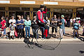 Man riding a penny-farthing in the SunRice Festival parade in Pine Ave.jpg