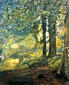 Mansel Lewis - In The Woods.jpg