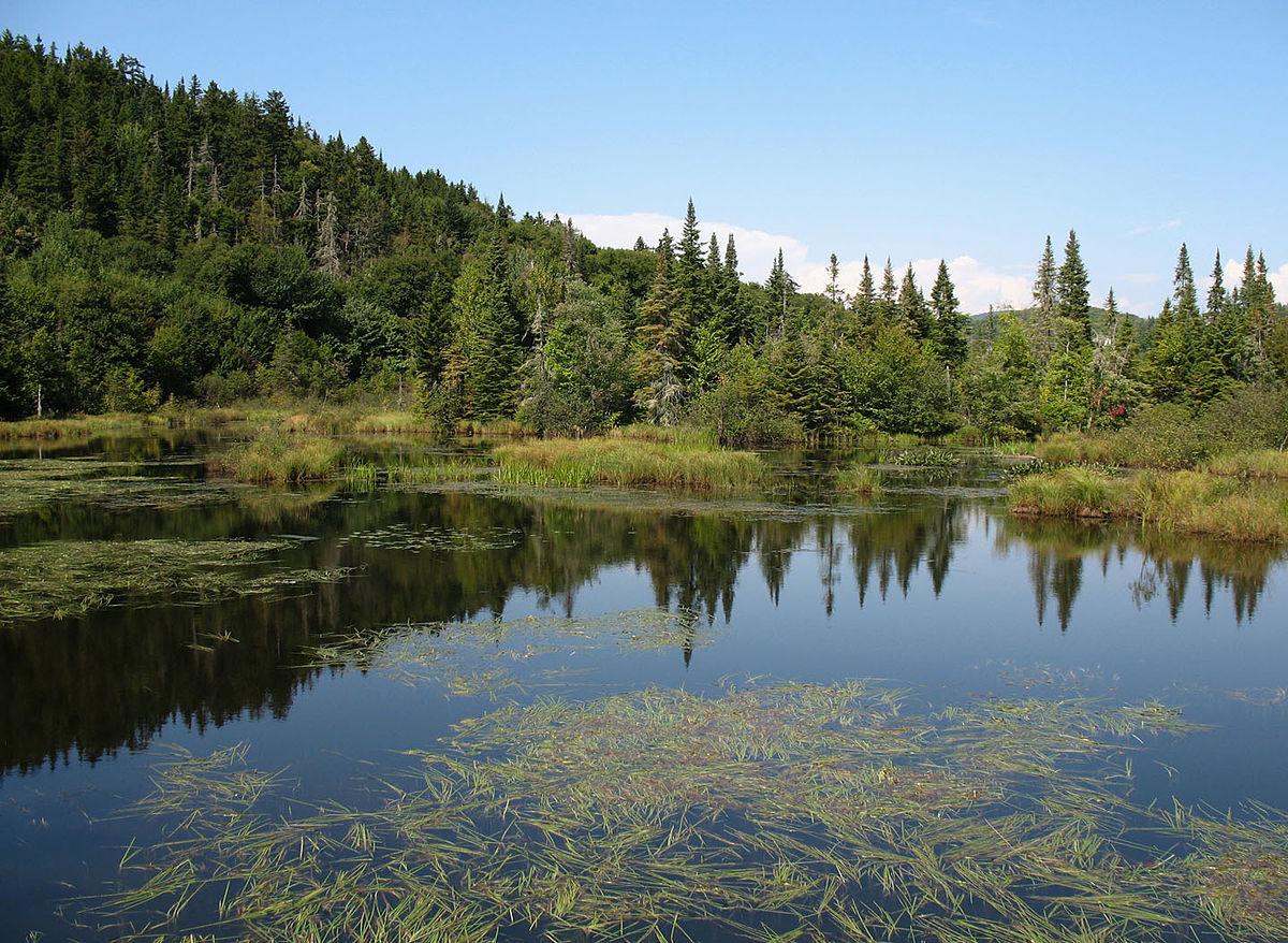 Rencontres eau espaces especes