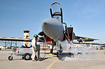 Massachusetts National Guard member refills oxygen system on F-15 Fighter aircraft.jpg