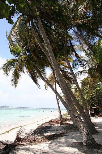 Sainte-Anne, Guadeloupe - Morning view at La Carevelle beach