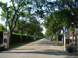 Next of Kin Memorial Avenue