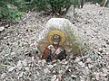 Memorial stone in Kurapaty - 3.jpg