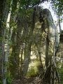 Menhir de Courtevrais - 07.JPG