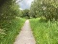 Middelgat Kwelderweg Krabburen Nationaal ParkLauwersmeer 14 30 34 216000.jpeg