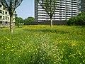 Midden in de wijk ^^ en el corazón - panoramio.jpg