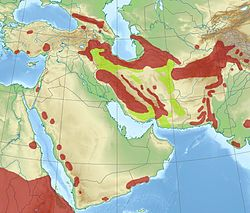 Middle east leopard range.jpg