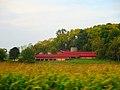 Midway Farm Buildings - panoramio.jpg