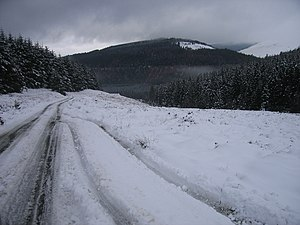 R115 road (Ireland) - The Military Road between Laragh and Glenmalure; no longer the R115, just a local road