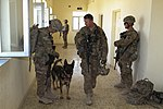 Military working dog helps protect service members 131001-Z-MH103-001.jpg