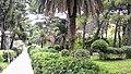Mlini park - panoramio.jpg