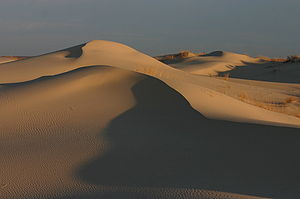 Monahans Sandhills at Sunrise.jpg