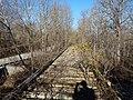 Monroe County - Victor Pike - abandoned railway - tracks - P1120770.JPG