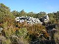 Mons haut fond cabane 9.jpg