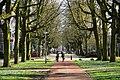 Monseigneur Nolenspark - panoramio (1).jpg