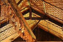 Thatch hut roof from below, with crossbeam holding up numerous small skulls surrounded by stringy brown leaves