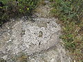 Mount Berenice - OVEDC - 2.JPG