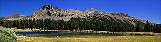 Mount Dana - Panoramic Photograph of Mount Dana, Yosemite National Park taken from Tioga Pass Park Entrance
