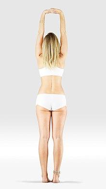 220px Mr yoga upward salute bound hands yoga asanas Liste des exercices et position à pratiquer