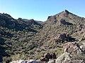 Mt. Pinter Base Loop, Tonto National Forest, Butcher Jones Trail, Fort McDowell, AZ 85264, USA - panoramio (128).jpg