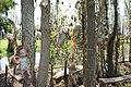 Muñecas entre árboles.JPG