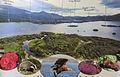 Muckross House Region.jpg